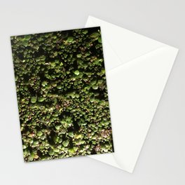Ivy Leagues. Fashion Textures Stationery Cards