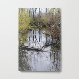 Silence in the bayou Metal Print