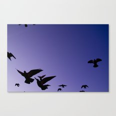 Even birds are chained to the sky.  Canvas Print
