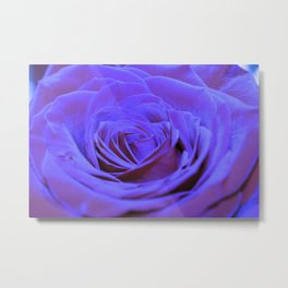 Purple Blue Rose Metal Print