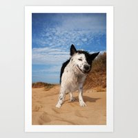 border collie Art Prints featuring Border Collie by Cowden