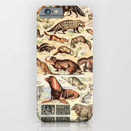 Cute Animals // Fourrures by Adolphe Millot XL 19th Century Science Textbook Diagram Artwork iPhone Case
