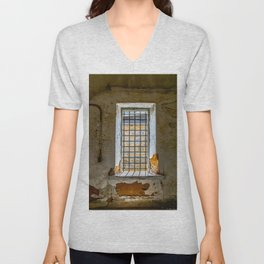 Behind Steel Bars Unisex V-Neck