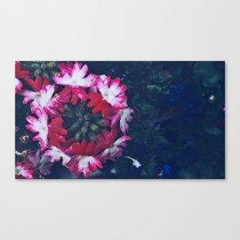 Pink Verbena Canvas Print