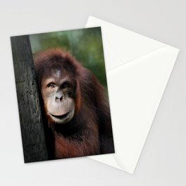 Indah Stationery Cards