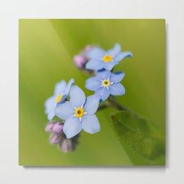 Forget-me-not Flowers On Natural Green Bokeh Background #decor #society6 #buyart Metal Print