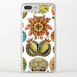 Ernst Haeckel Ascidiae Sea Squirts Clear iPhone Case