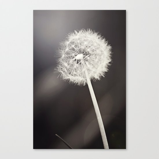 My Most Desired Wish Canvas Print