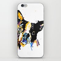 boston terrier iPhone & iPod Skins featuring boston terrier by Smolder Design