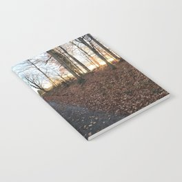 Forest in the Fall Notebook