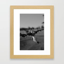 Caught on the Line Framed Art Print