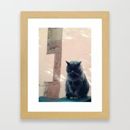 Black cat and pink wall Framed Art Print