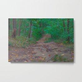 Road in the Woods Metal Print