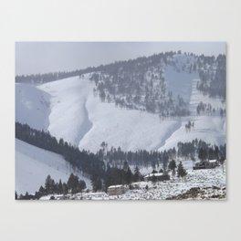 A Winter's Scene Canvas Print