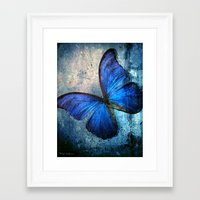 butterfly Framed Art Prints featuring butterfly  by mark ashkenazi
