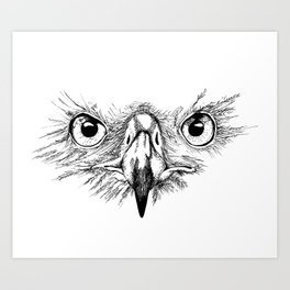 Eagle Eyes Art Print