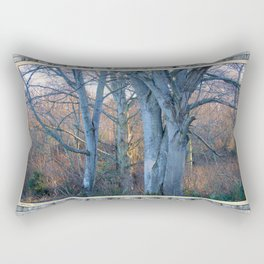 WINTER MAPLES IN AFTERNOON LIGHT Rectangular Pillow