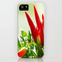 Chili peppers on the vine iPhone Case