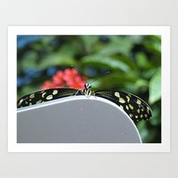 Hello There Flutterby Art Print
