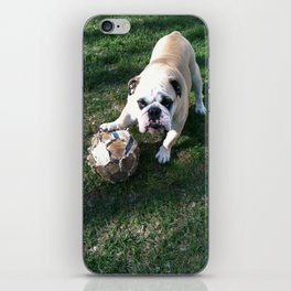 Bulldog Playing Soccer iPhone Skin