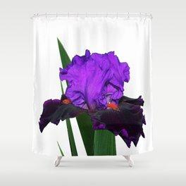 Iris 'Visiting Royalty' Shower Curtain