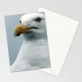 Seagull Stationery Cards