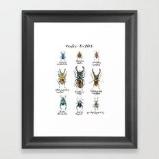 Exotic Beetles Framed Art Print