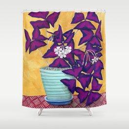 Purple Shamrock Houseplant Painting Shower Curtain