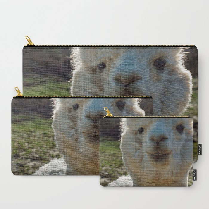 Smiling Llama Carry All Pouch By Twodummiesonabikephotography Society6