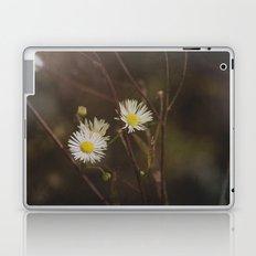 Hope Springs Laptop & iPad Skin