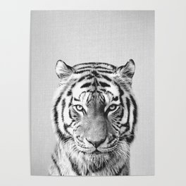 Tiger - Black & White Poster