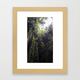 Winchead Cave Entrance I, Charleston, Buller, New Zealand Framed Art Print