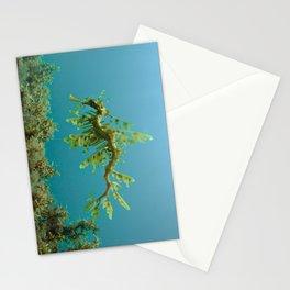 Leafy Sea Dragon Phycodurus eques Stationery Cards