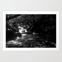 Shadow of The Mountain Art Print