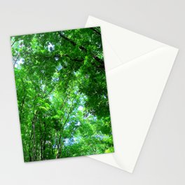 Bilar Man-Made Forest Bohol, Philippines Stationery Cards