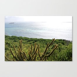 Views that stretch for miles Canvas Print