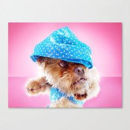 Super Pets Series 1 - Super Cosmo 4 Canvas Print