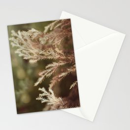 Pine and bokeh Stationery Cards