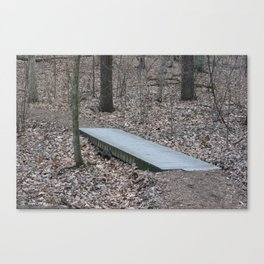 brown bridge Canvas Print