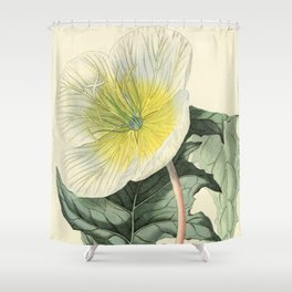 1479 Shower Curtain