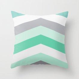 Mint and gray chevron Throw Pillow