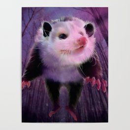 possum surprise Poster
