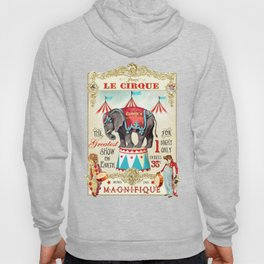 The Circus is in town Hoody