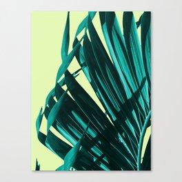 Palm leaves  #buyart #decor #society6 Canvas Print