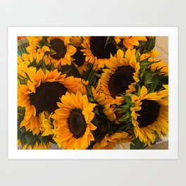 Suflower Basket Art Print