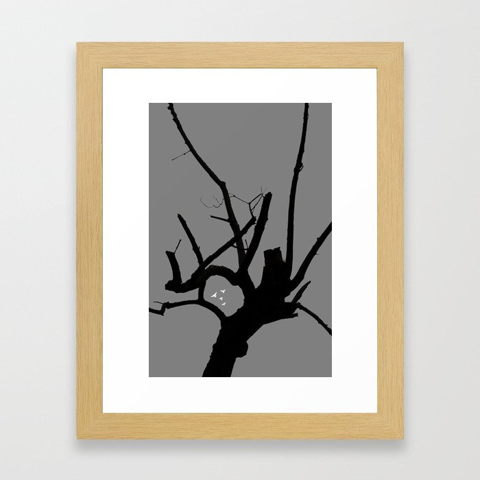 If Roy Moore Was A Tree, What Kind Of Tree Would He Be? Framed Art Print