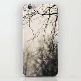 After The Rain iPhone Skin