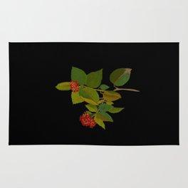 Lantana Mary Delany Vintage Floral Collage Botanical Flowers Black Background Rug