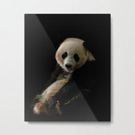 Giant Panda Sticking Out Her Tongue Metal Print