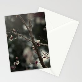 Apricot tree III Stationery Cards